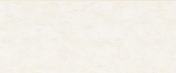 リオビスタ [地域限定] リフレホワイト